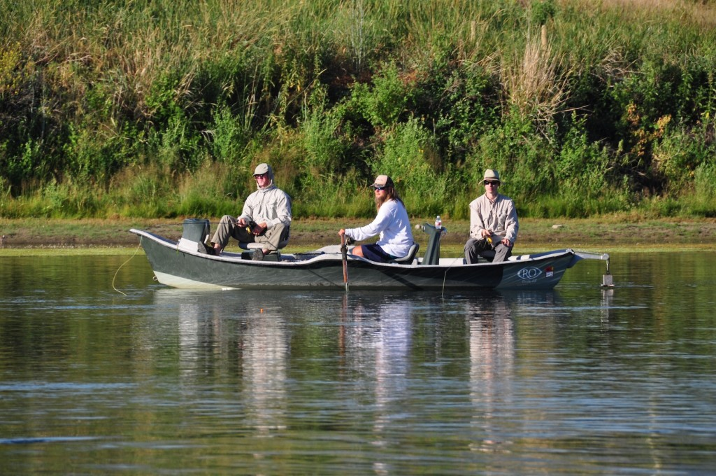 Missouri river fly fishing report montana for Missouri fishing report