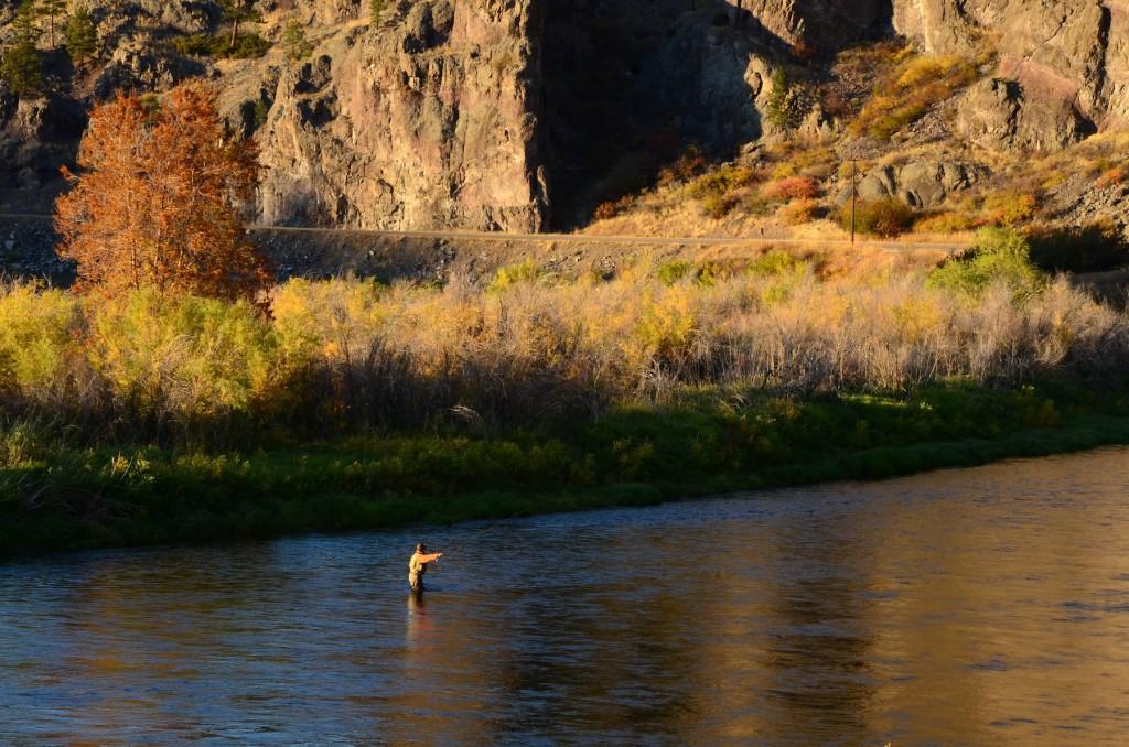 Missouri river september fishing forecast headhunters for Missouri river fly fishing