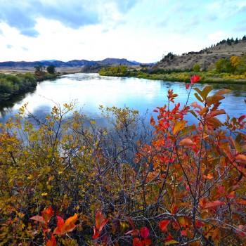 Missouri River September Fishing Forecast
