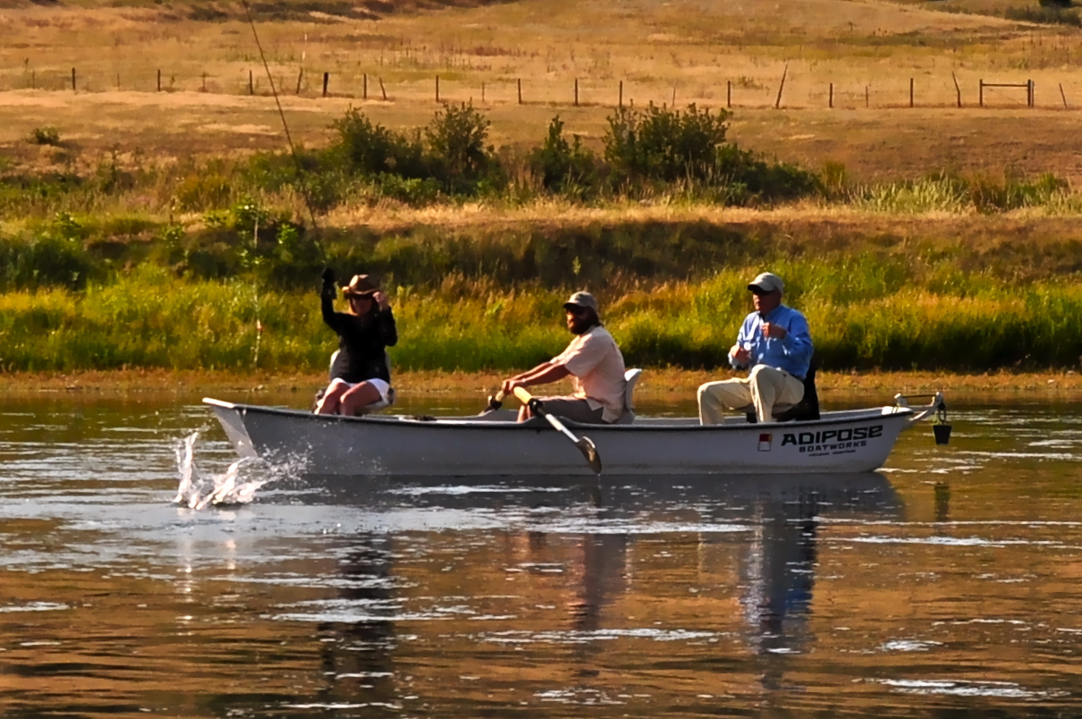 Missouri river montana fly fishing headhunters fly shop for Missouri trout fishing