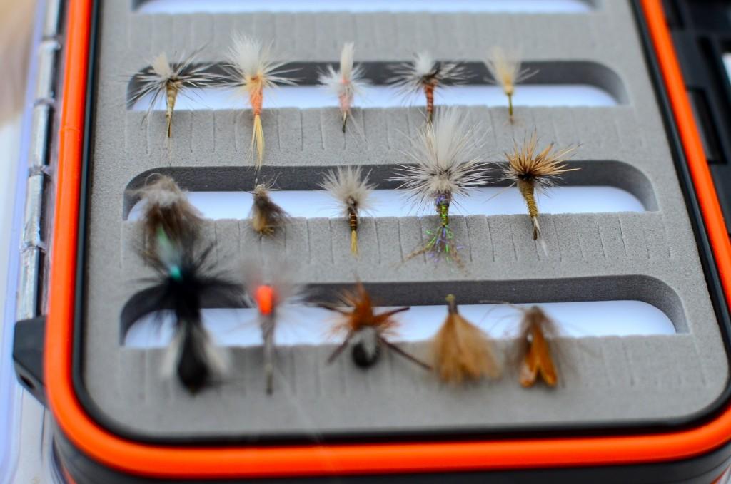 Missouri River August Flies
