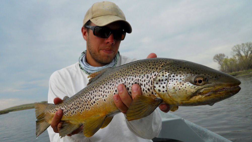 Travis Whitfield Fly Fishing