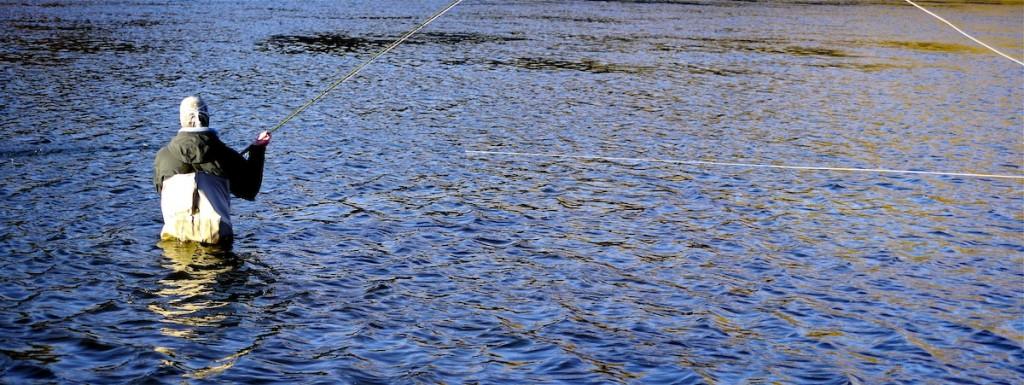 Montana Spey Fishing