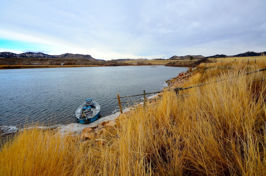 Missouri river montana fishing report 1 headhunters for Montana fishing report