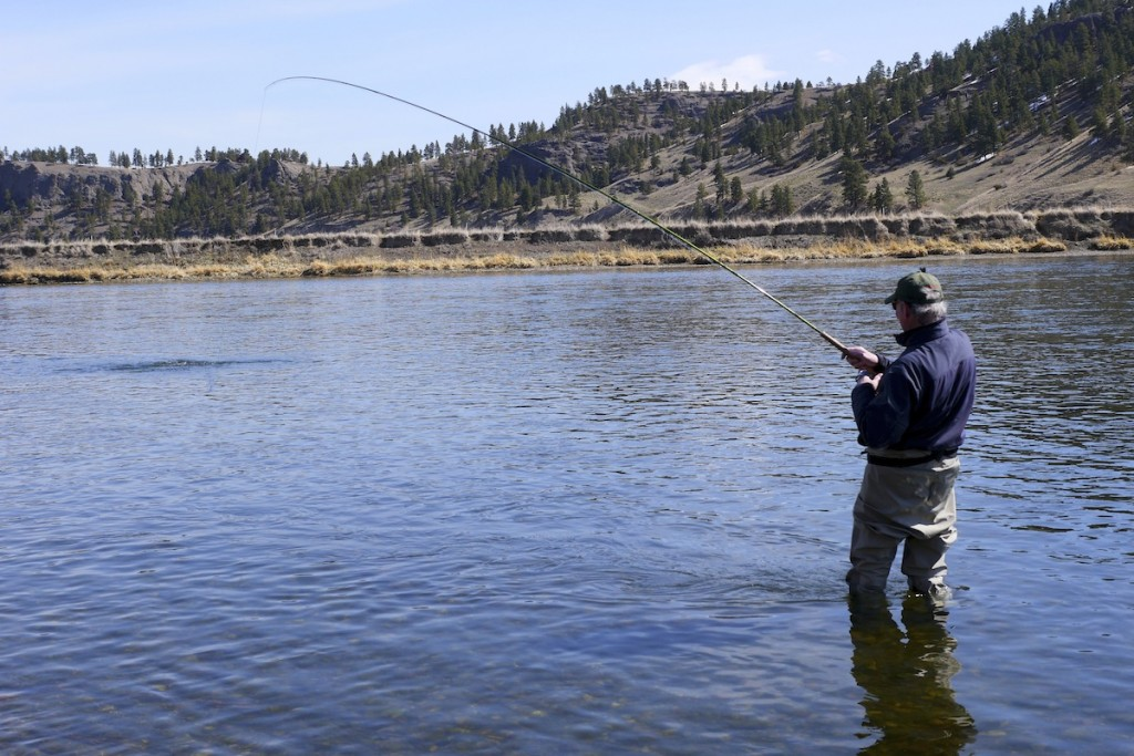 Spey fishing Montana Missouri River