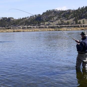 Spey fishing Montana Missouri River