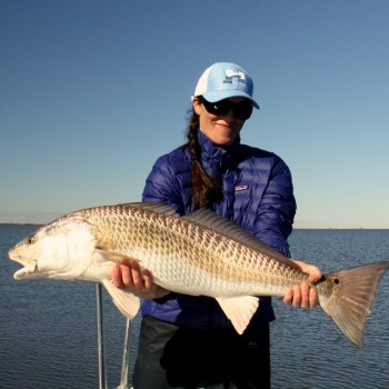 Teal Basile Redfish