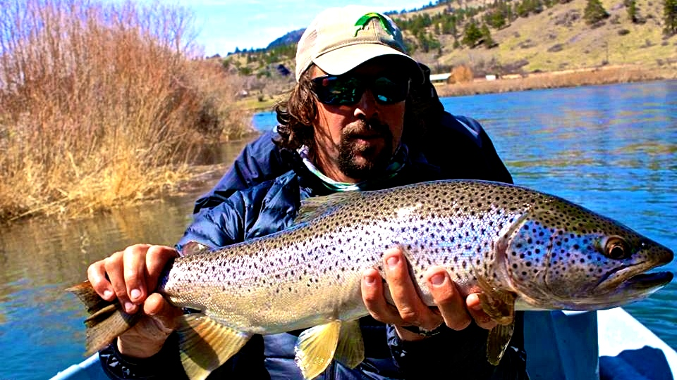Headhunters fly shopfly fishing blog and missouri river for Montana fly fishing report