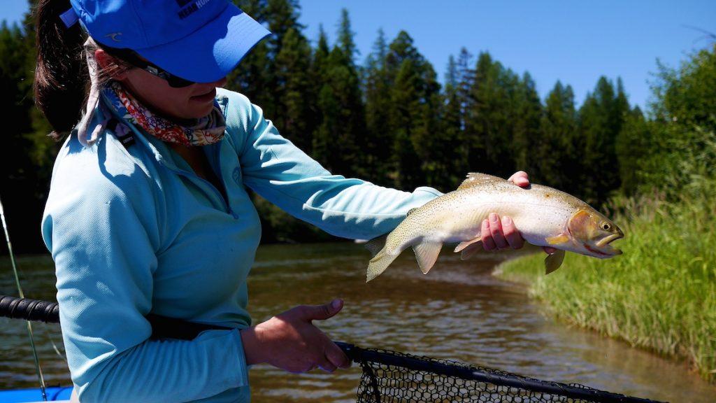 Blackfoot River Cutthroat