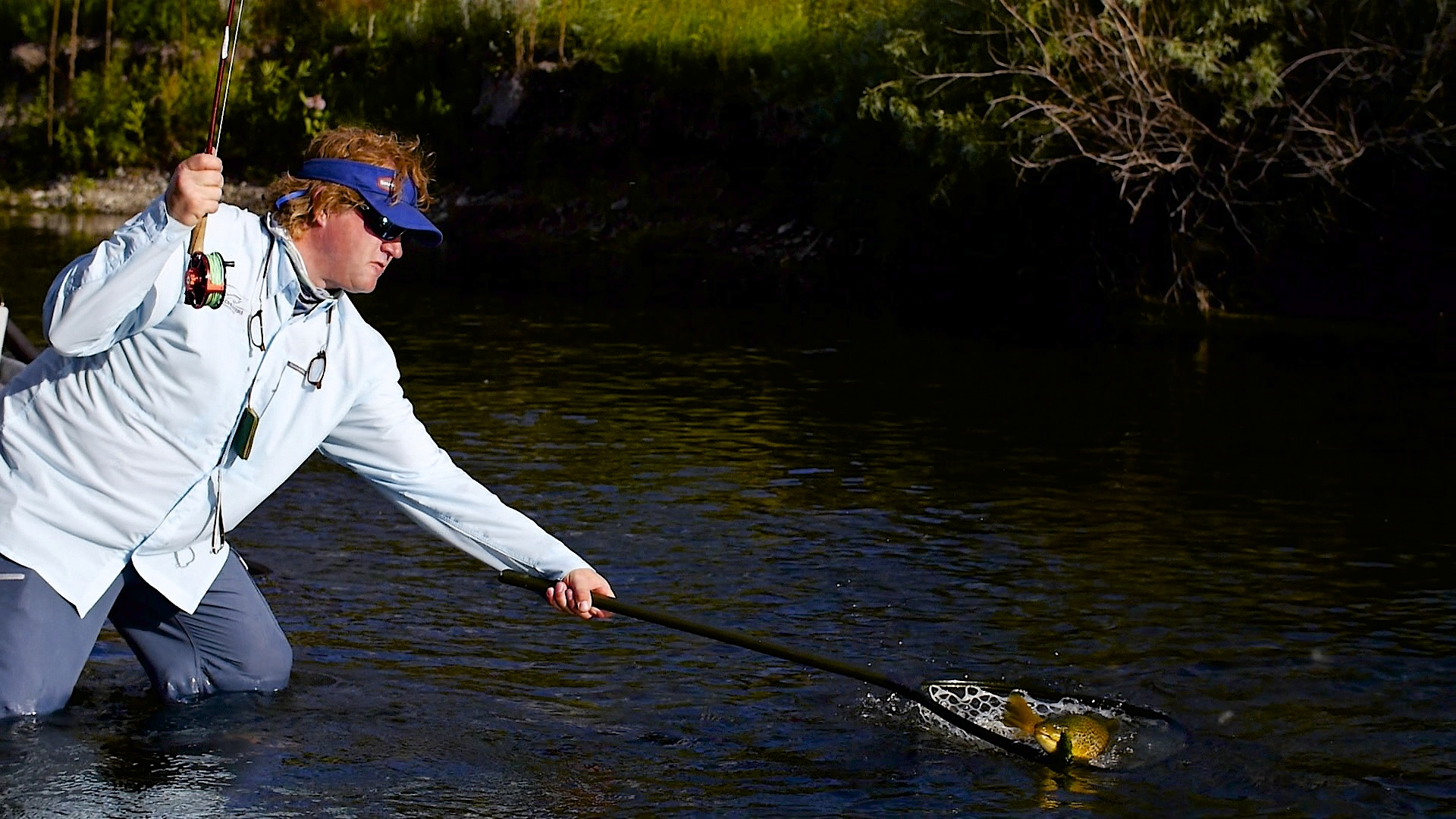 Missouri River trico fishing video