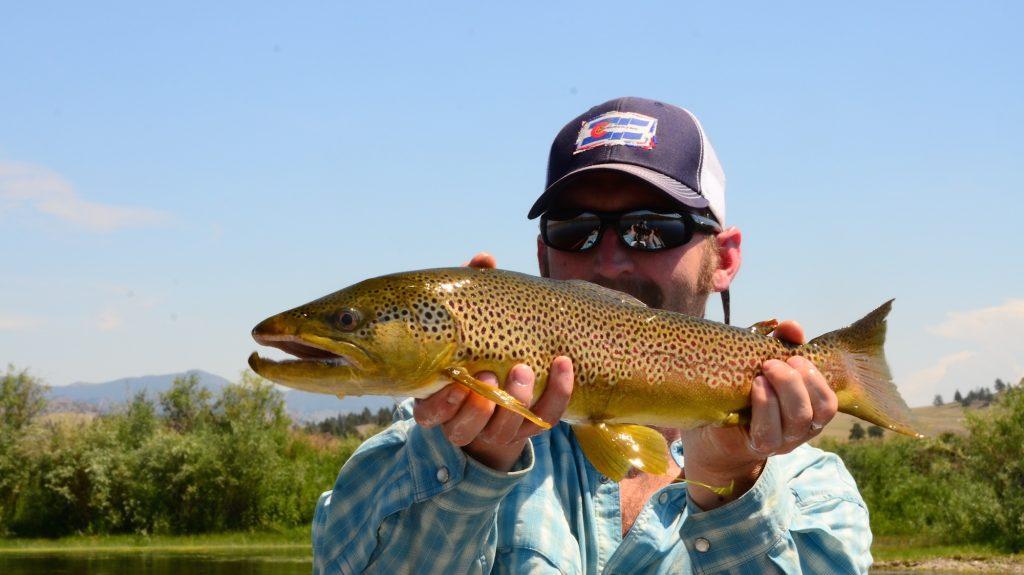 Missouri River Montana Fishing Report 8.18.14