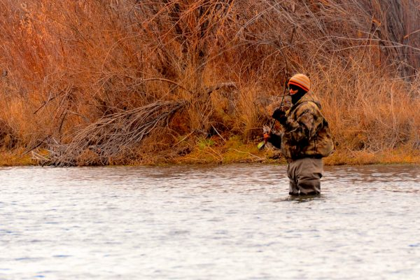 Missouri River Montana Fishing Report 11.29.14