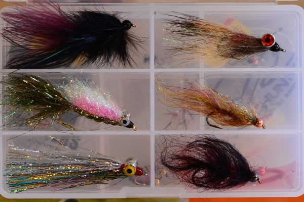 Missouri River Winter Flies
