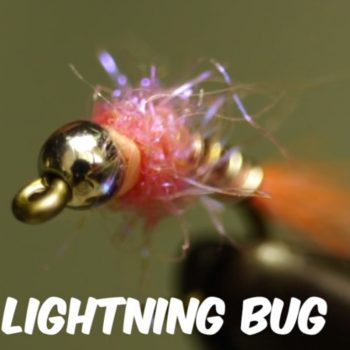 Pink Lightening Bug Fly Tying Video