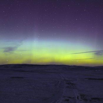 Montana Aurora