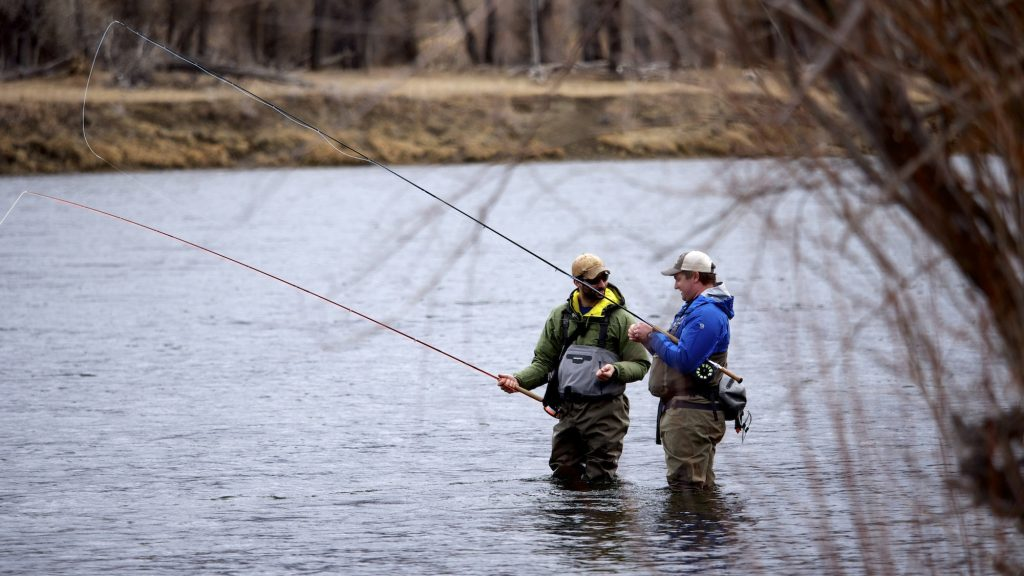 Montana trout spey