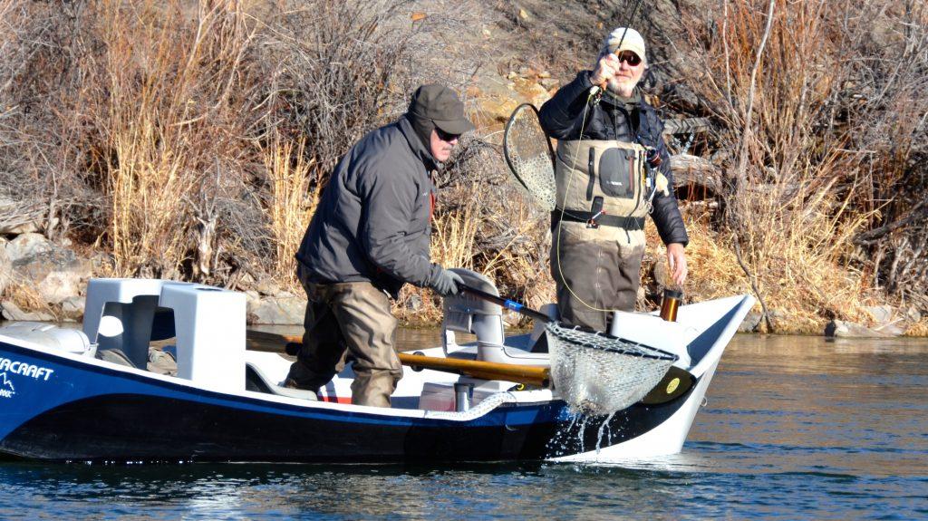 Missouri river montana fishing report 3 headhunters for Montana fly fishing report