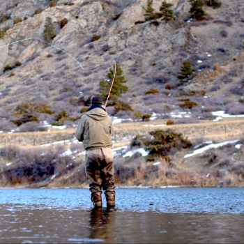 Fly Fishing Cinemagraph