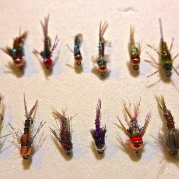 Missouri River BAetis Nymphs