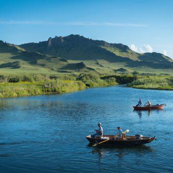 Montana PMD fishing
