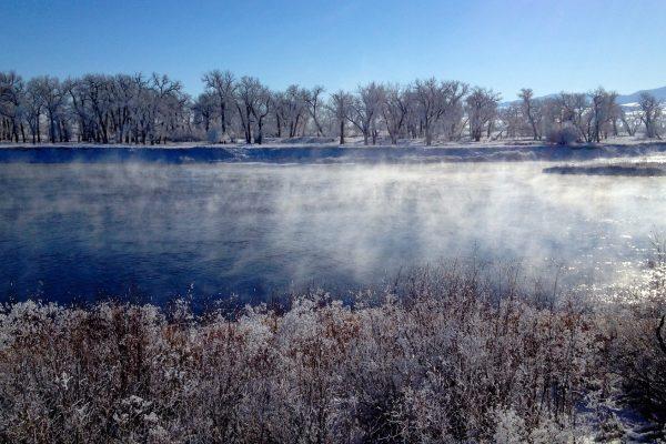 Missouri River Montana Monday Fishing Report 11.30.15