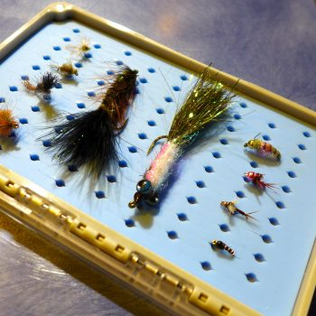 Top 10 Missouri River November Flies