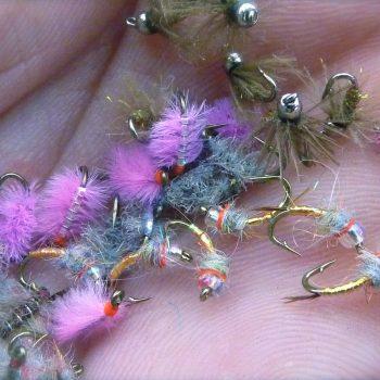 Missouri River Montana Fishing Report 11.12.15