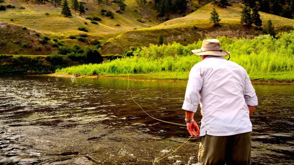 Dry fly Missouri River fly fishing