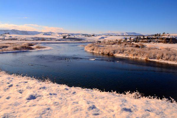 Friday Foto December Snow Edition