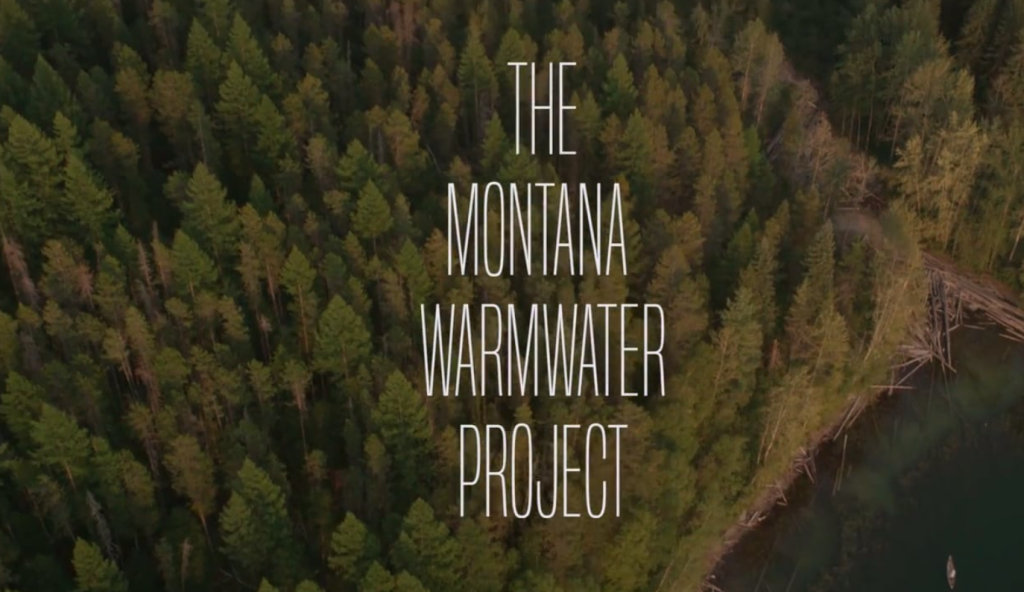 The Montana Warmwater Project