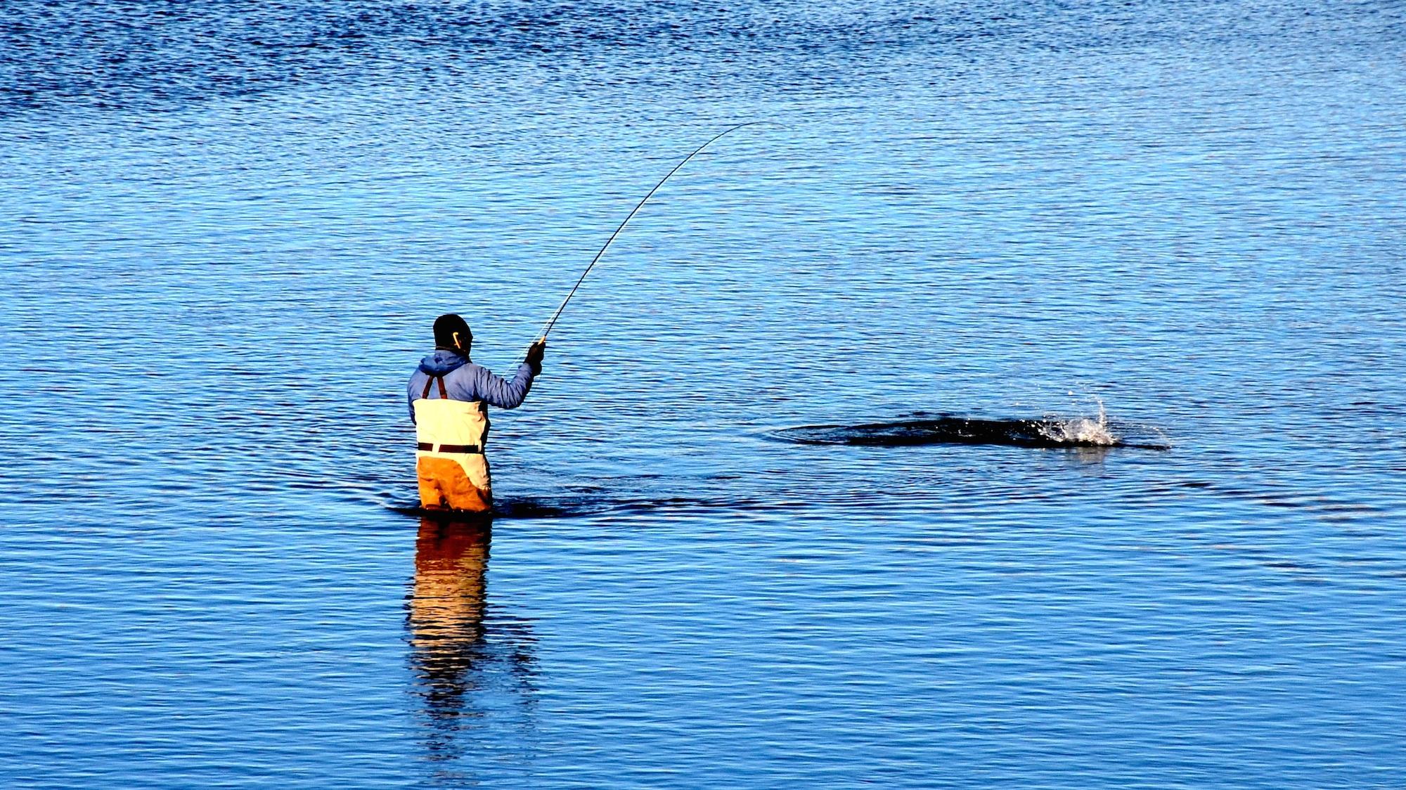 February Fly Fishing Forecast 2016