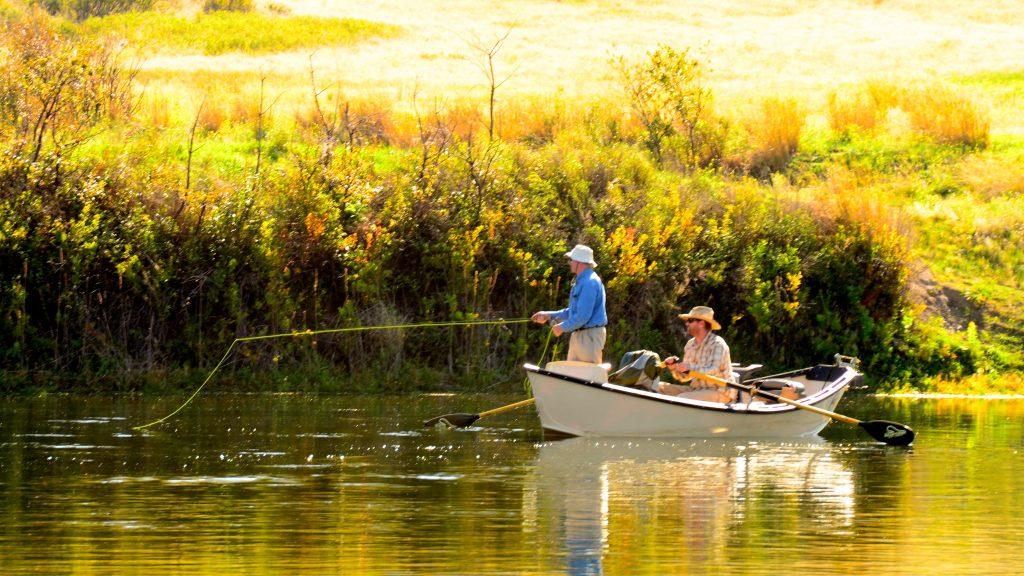 Headhunters fly shop missouri river montana fly fishing for Missouri river fly fishing