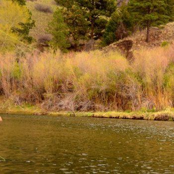 April 28th Missouri River Fishing Report
