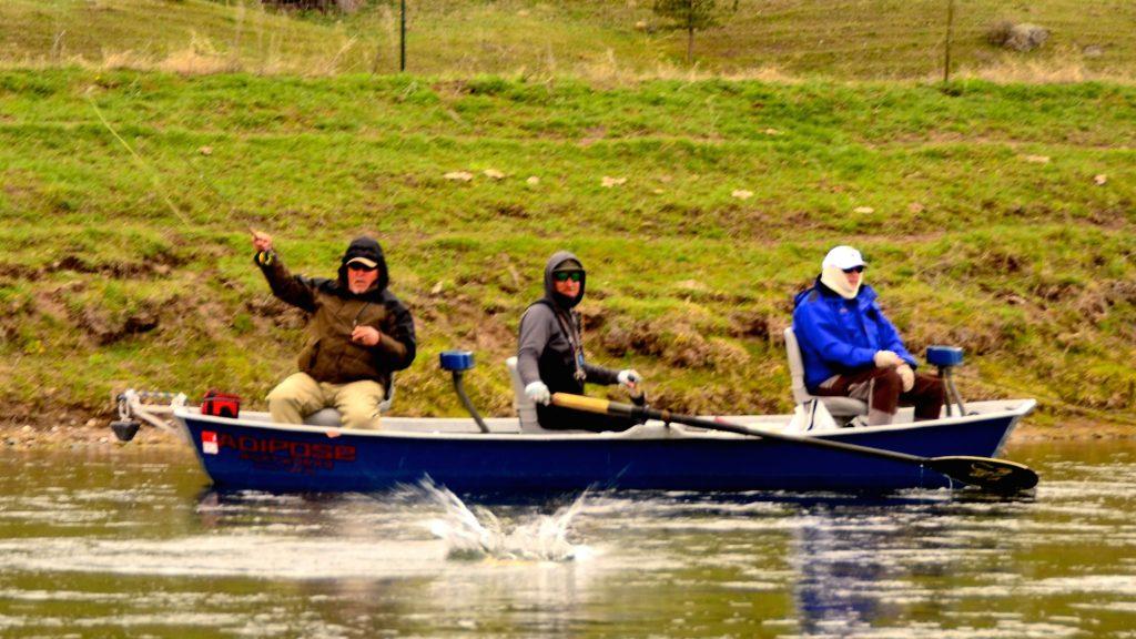 Missouri river may 2nd fishing report headhunters fly shop for Missouri fishing report
