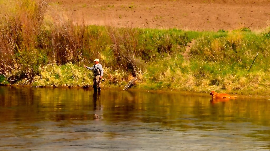 May missouri river fishing forecast headhunters fly shop for Fishing weather report