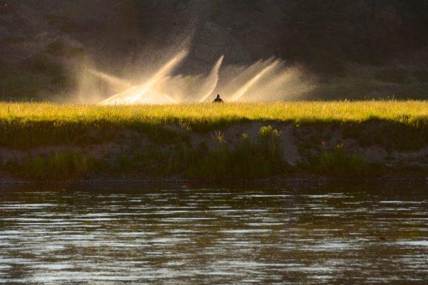 http://www.headhuntersflyshop.com/guided-fly-fishing/