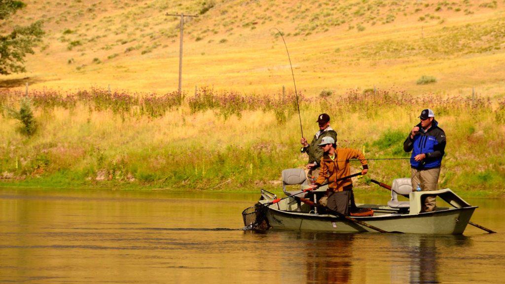 Missouri river montana july 10th fishing report for Missouri river fishing