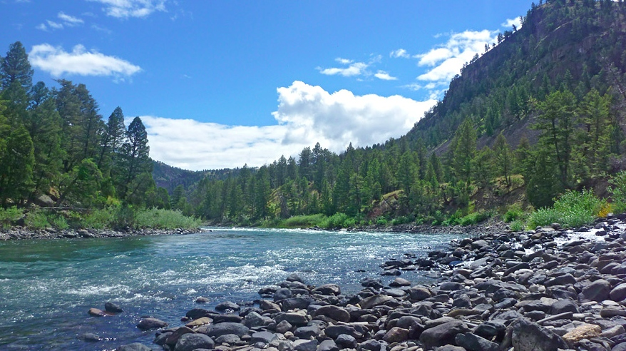 Missouri river fly fishing report montana for Fly fishing yellowstone river