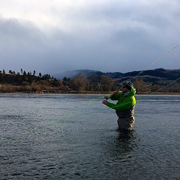 Monday Snow Day, Trout Spey, & Shop w/Headhunters