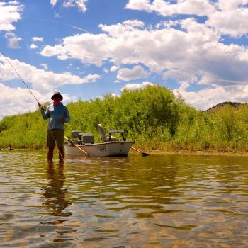 Sunday Mid-Summer Missouri River Tips