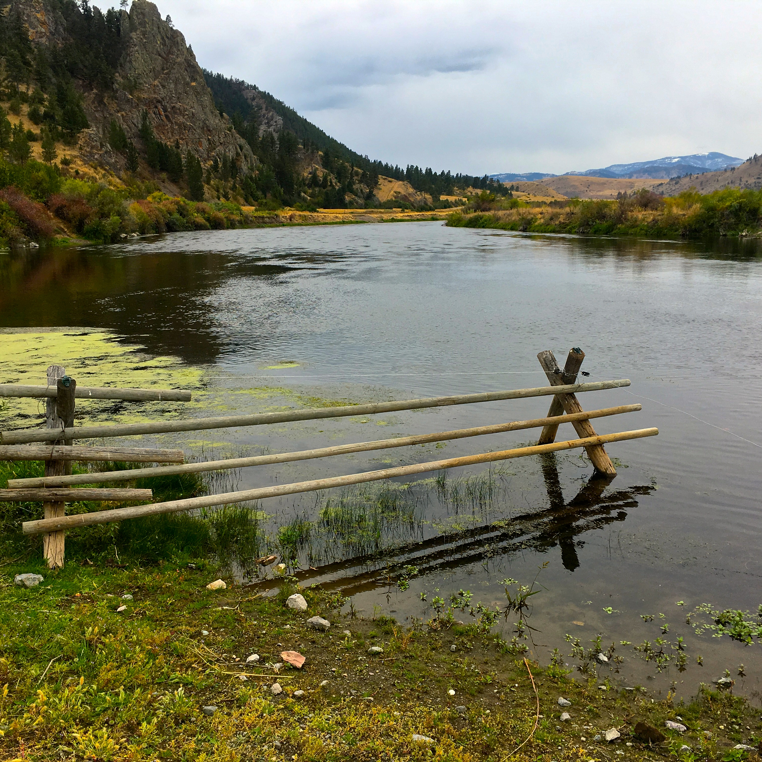 Hump Day Fishing Report Montana's Missouri River