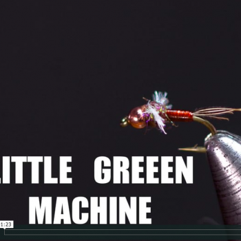 Little Green Machine JAV