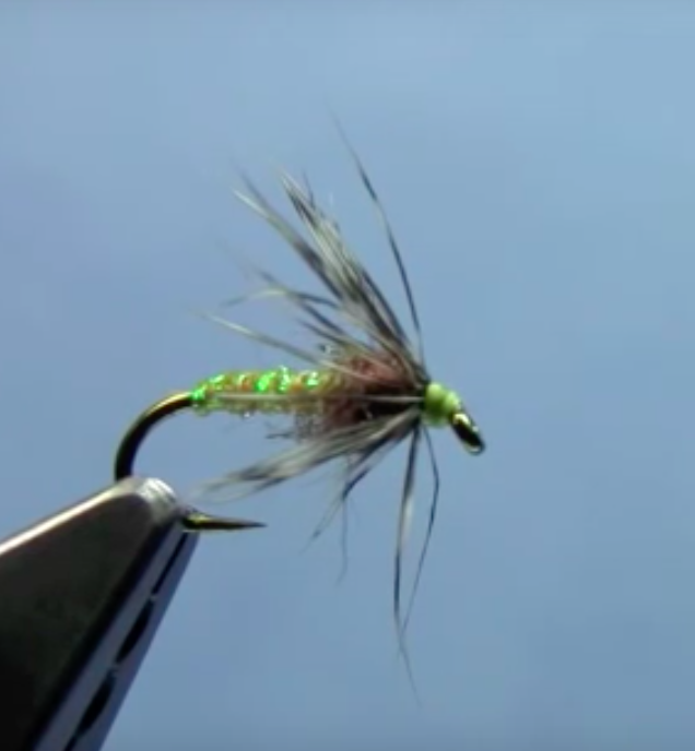 Soft Hackle Tying Video with Hans