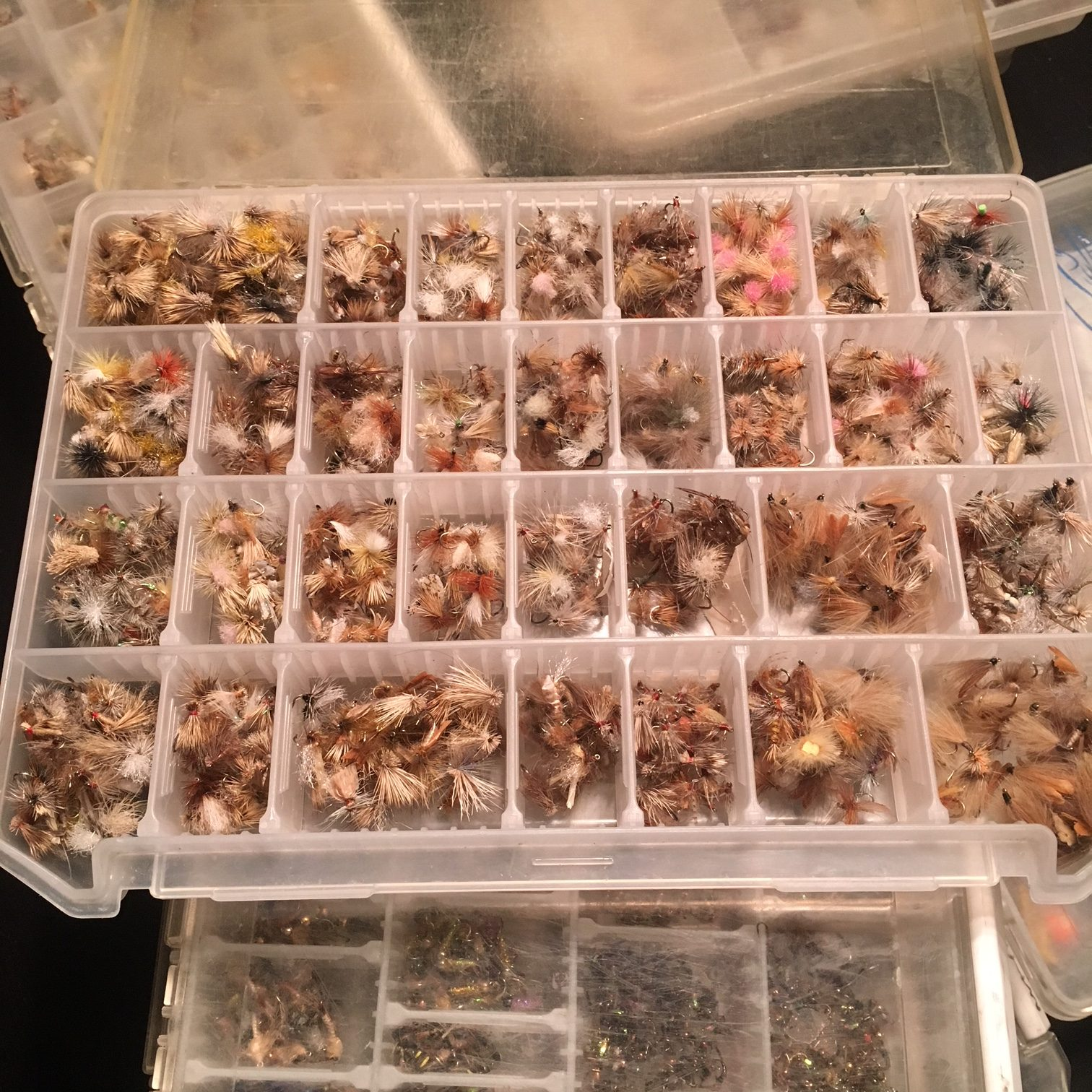 Since my brain is fried, I may as well organize flies.