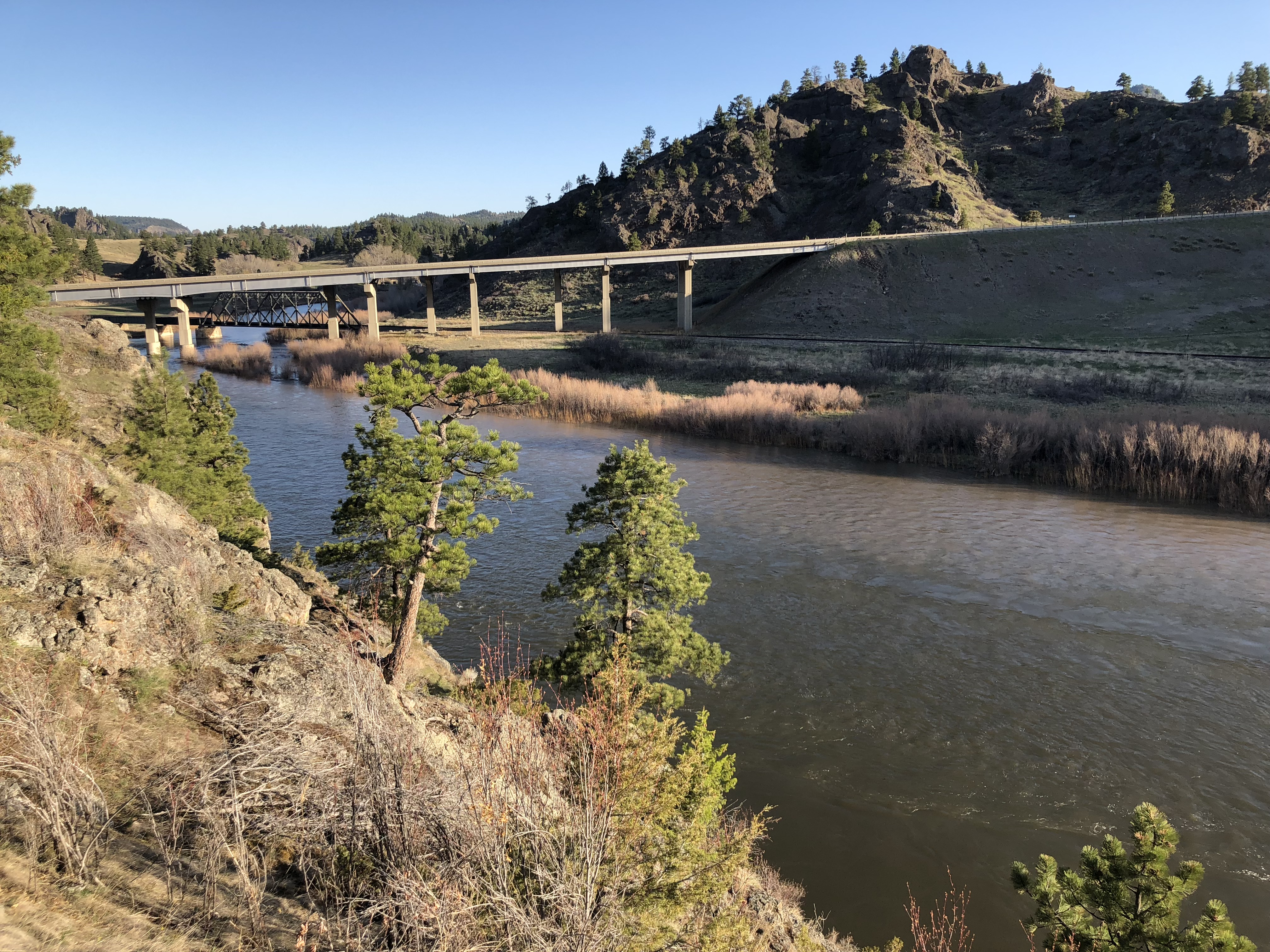 Missouri River Fishing Report April 29th