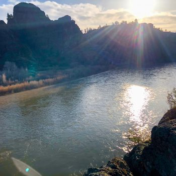 Missouri River May Fly Fishing Forecast