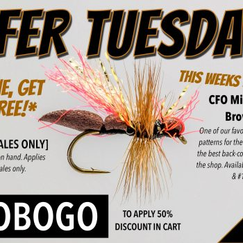 2FER TUESDAY BOGO CFO ANT