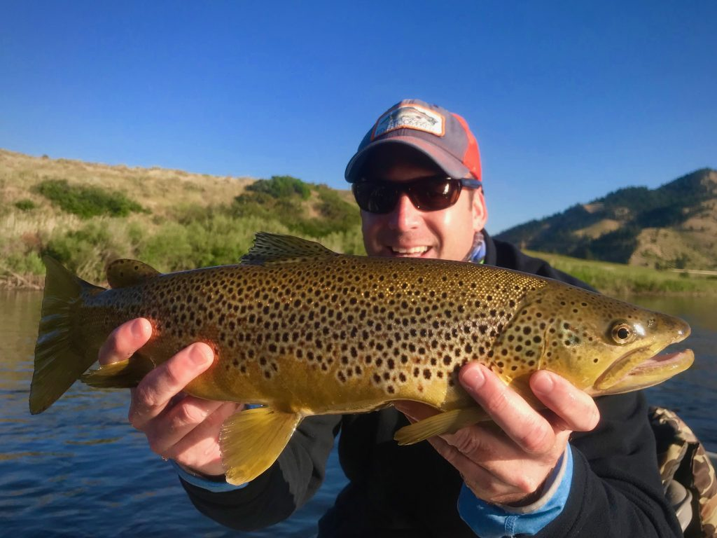 Friday Foto Dry Fly Brown Trout