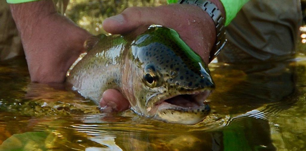 Missouri River Monday. July.