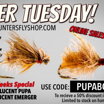 2FER TUESDAY Translucent Pupa BOGO Online Fly Sale
